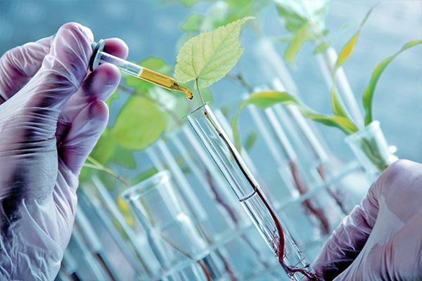 Plant Chemistry