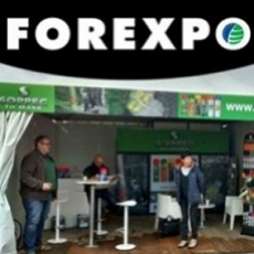 FOREXPO fair june 2016 : the brief summary of our stay